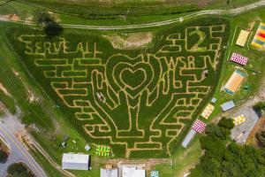 뷰포트 콘 메이즈(Buford Corn Maze) 전경