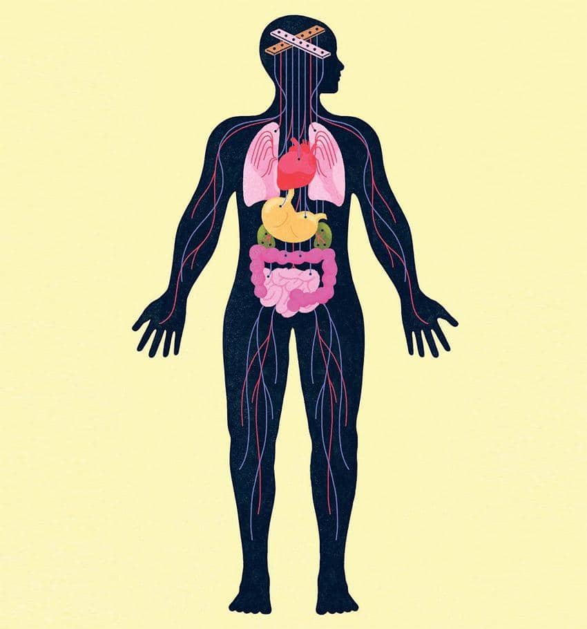 <삽화: Gracia Lam/뉴욕타임스>